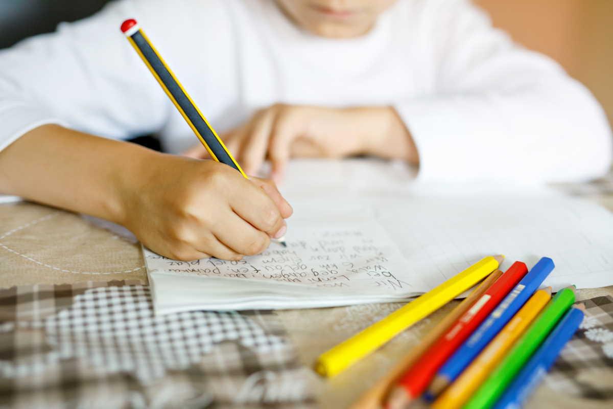 Nuo rugsėjo vaikus pagal priešmokyklinio, pradinio, pagrindinio, vidurinio ugdymo bendrąsias programas bus galima mokyti namuose.
