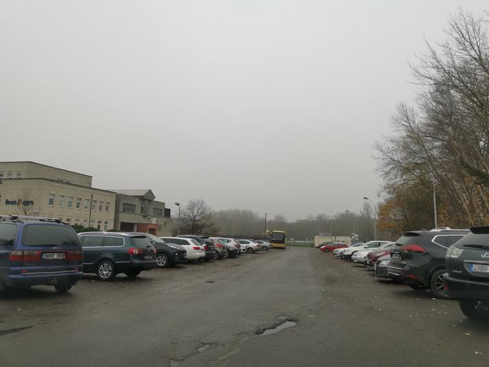 Smėlynės gatvė prie Draugystės stadiono_I. STULGAITĖS-KRIUKIENĖS nuotr.